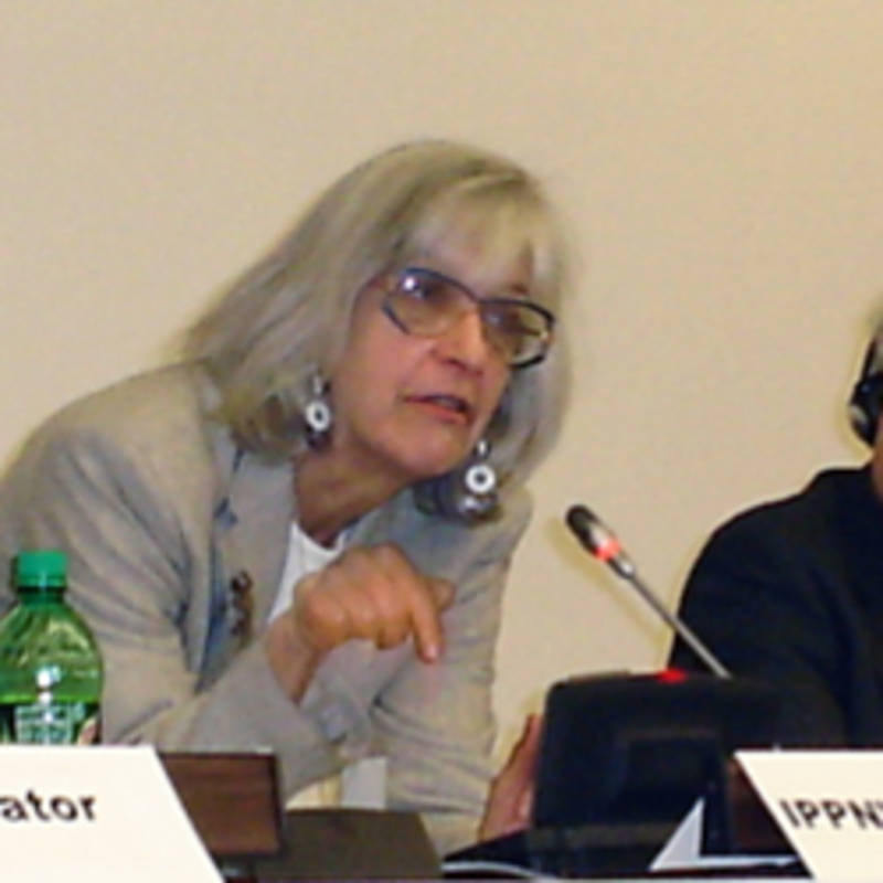 Dr. Cathey Falvo at the UN Arms Trade Treaty PrepCom 2011