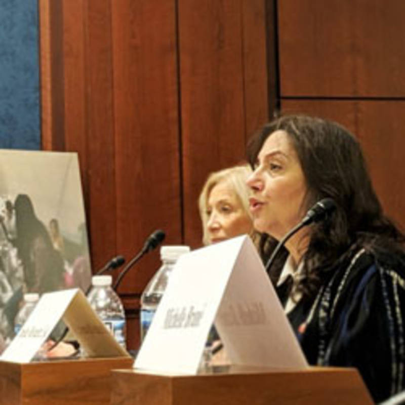 Dr. Amy Cohen before the U.S. Senate committee hearing